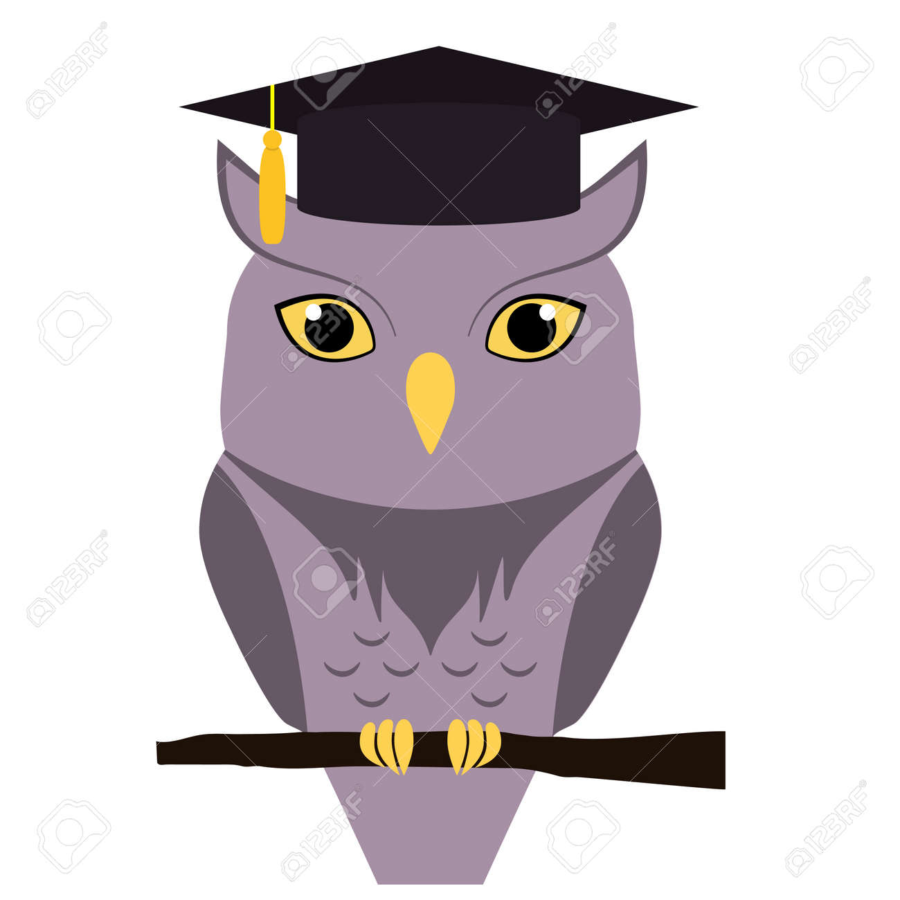 cute owl with graduation hat on head isolated on white vector