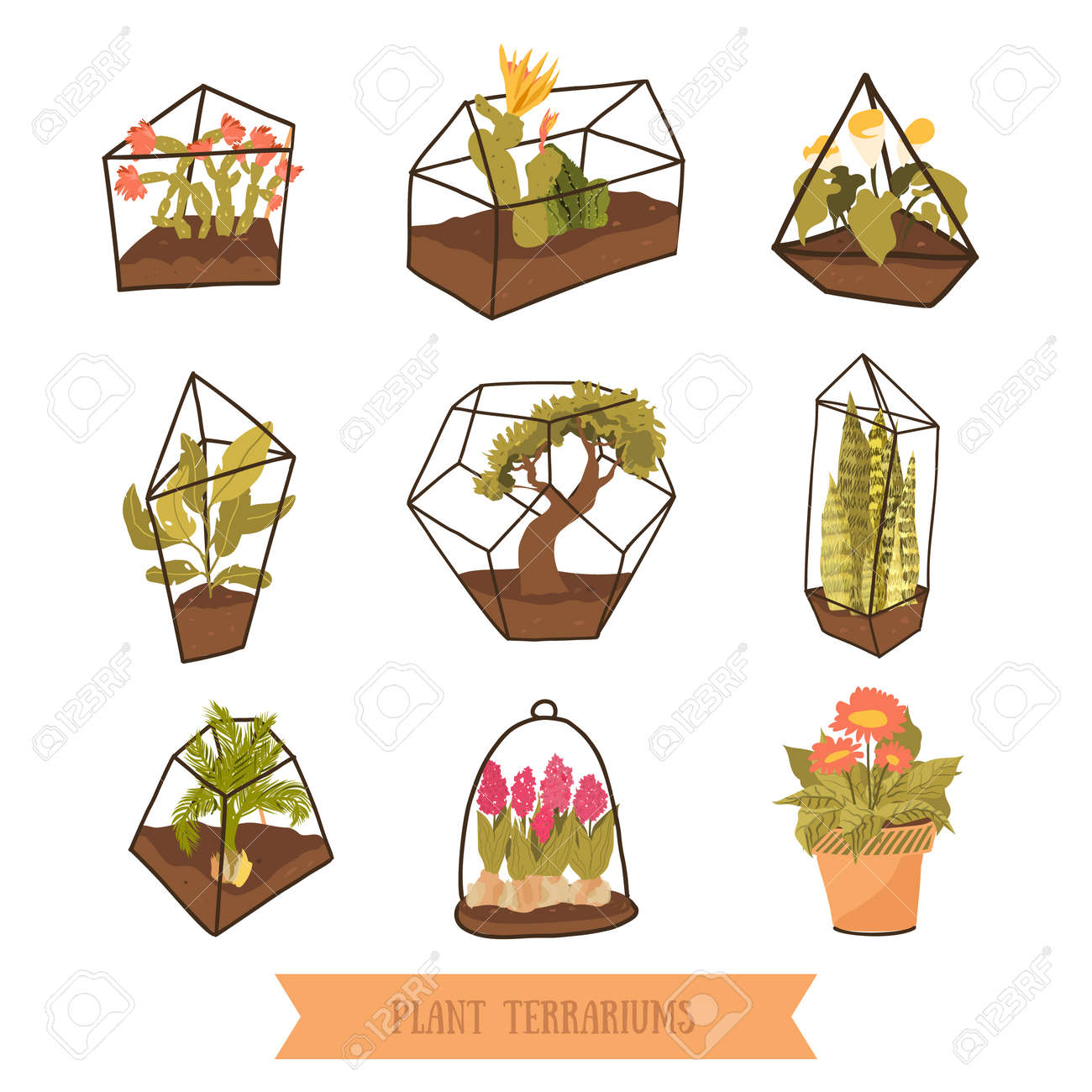 Doodle Terrariums With Plants For Succulents And Cactus Glass Royalty Free Cliparts Vectors And Stock Illustration Image 103732596