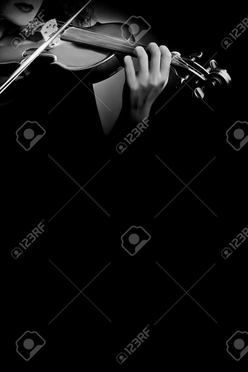 Violin musical instruments of symphony orchestra concert Standard-Bild - 19664203