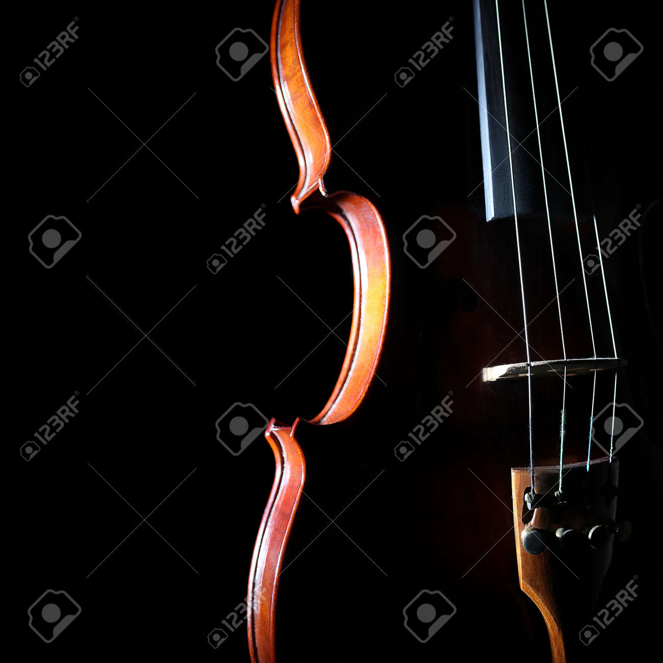 Violin orchestra musical instruments Silhouette string closeup on black - 21561947
