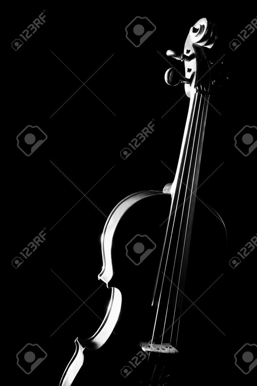 Violin orchestra musical instruments Standard-Bild - 26131359