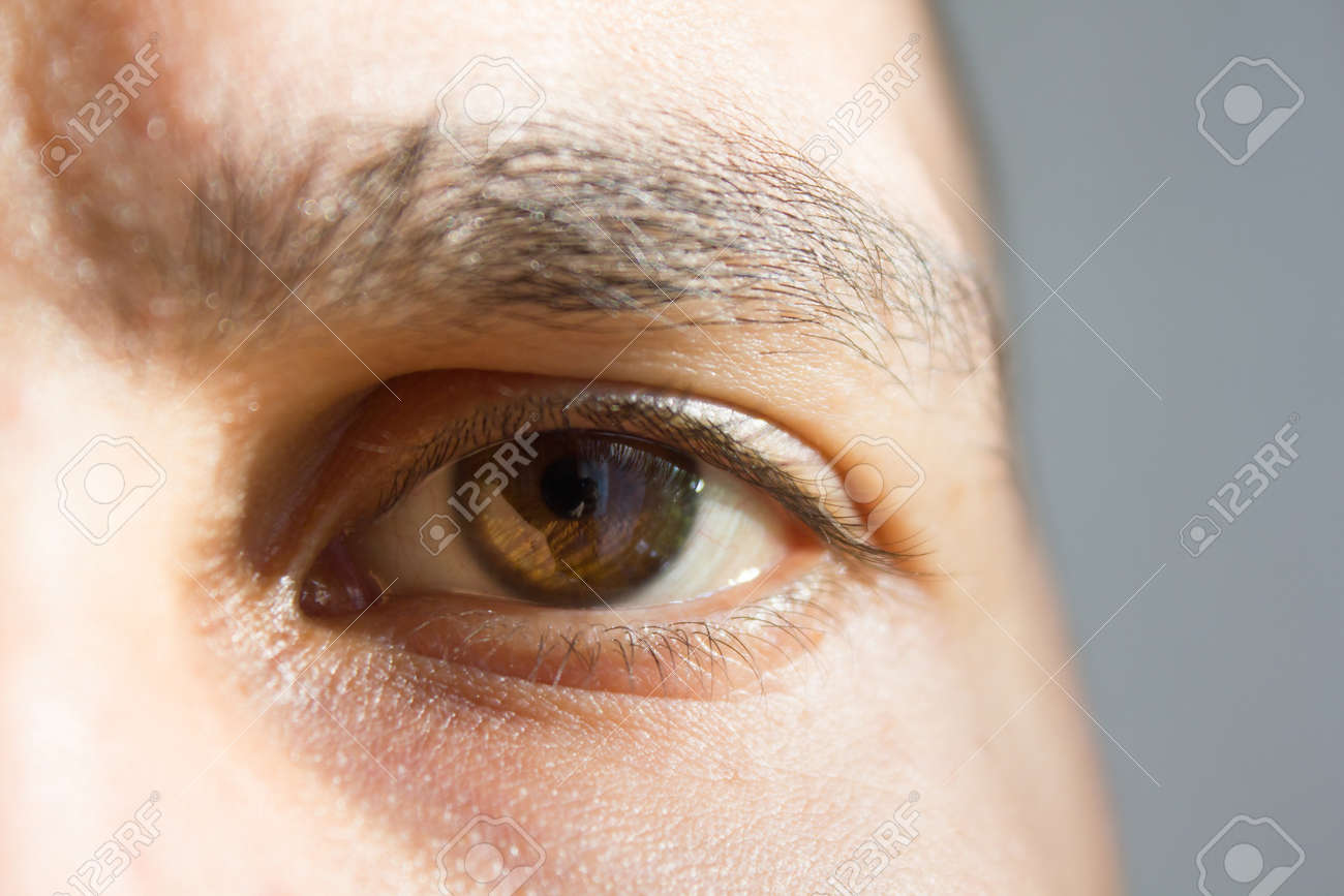 brown eye of a man. parts of the face. vision. good vision. - 122003245