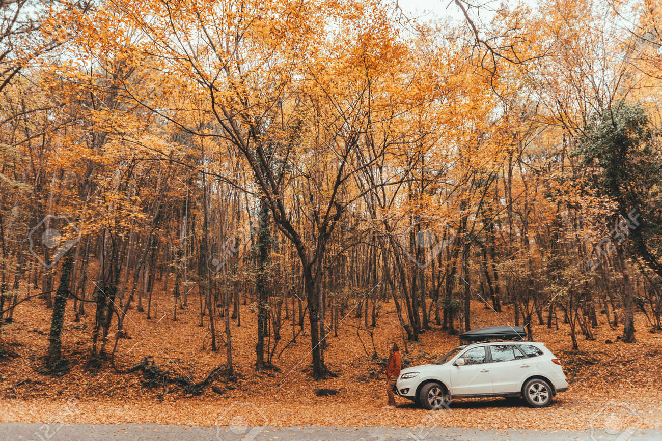 Man driving car in the forest following road way among autumn woods - 157335942