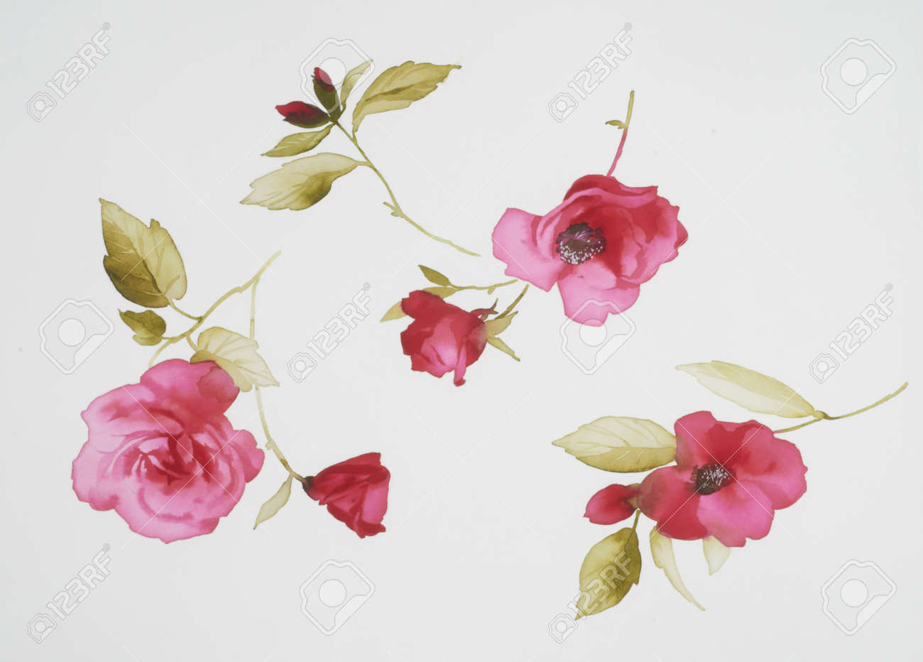 Color illustration of flowers in watercolor paintings Stock Illustration - 12566745