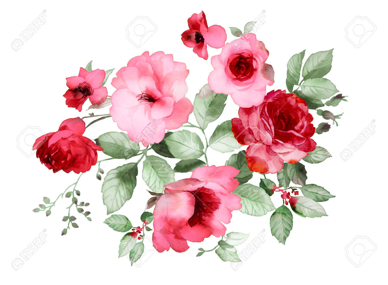 Flower stock photos royalty free flower images color illustration of flowers in watercolor paintings mightylinksfo