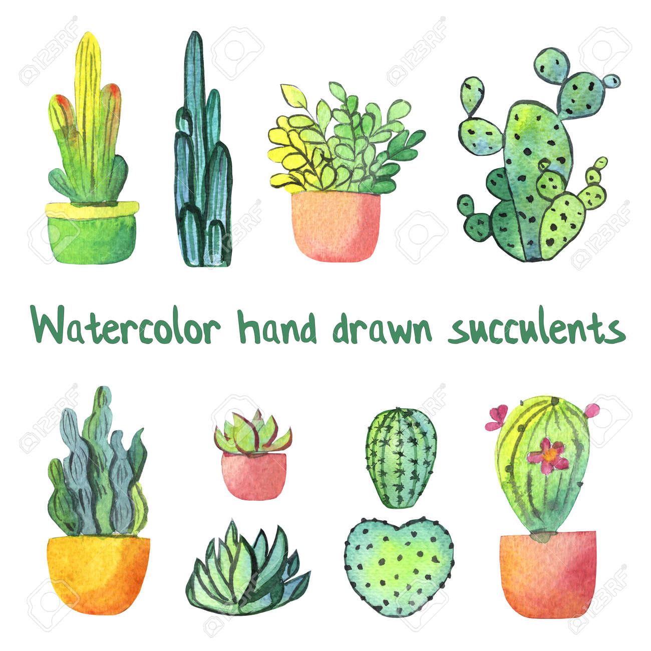 Watercolor Hand Drawn Cactus And Succulent In Pot Set Isolated Stock Photo Picture And Royalty Free Image Image 96690117