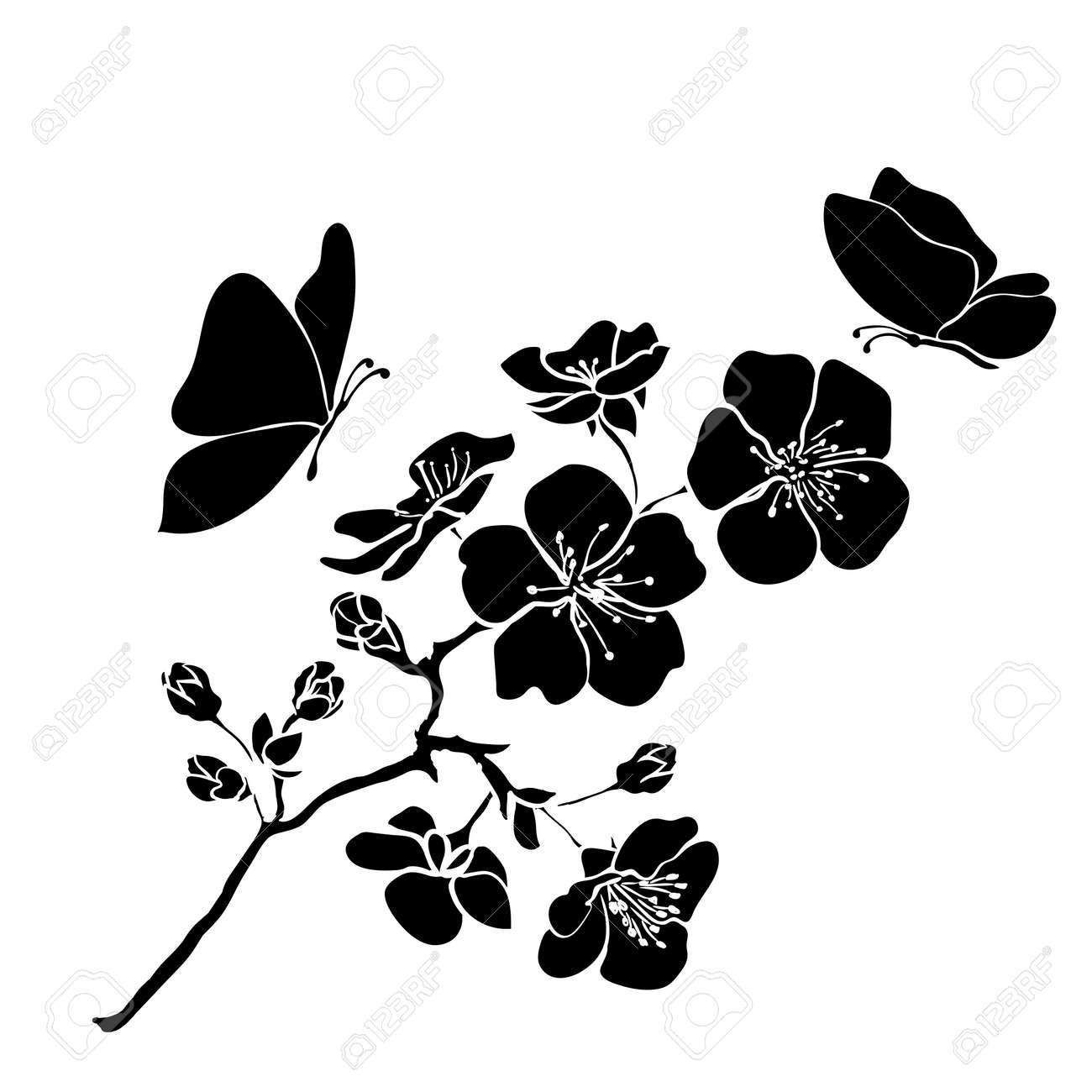 twig sakura blossoms. Vector illustration. Black outline - 37744790
