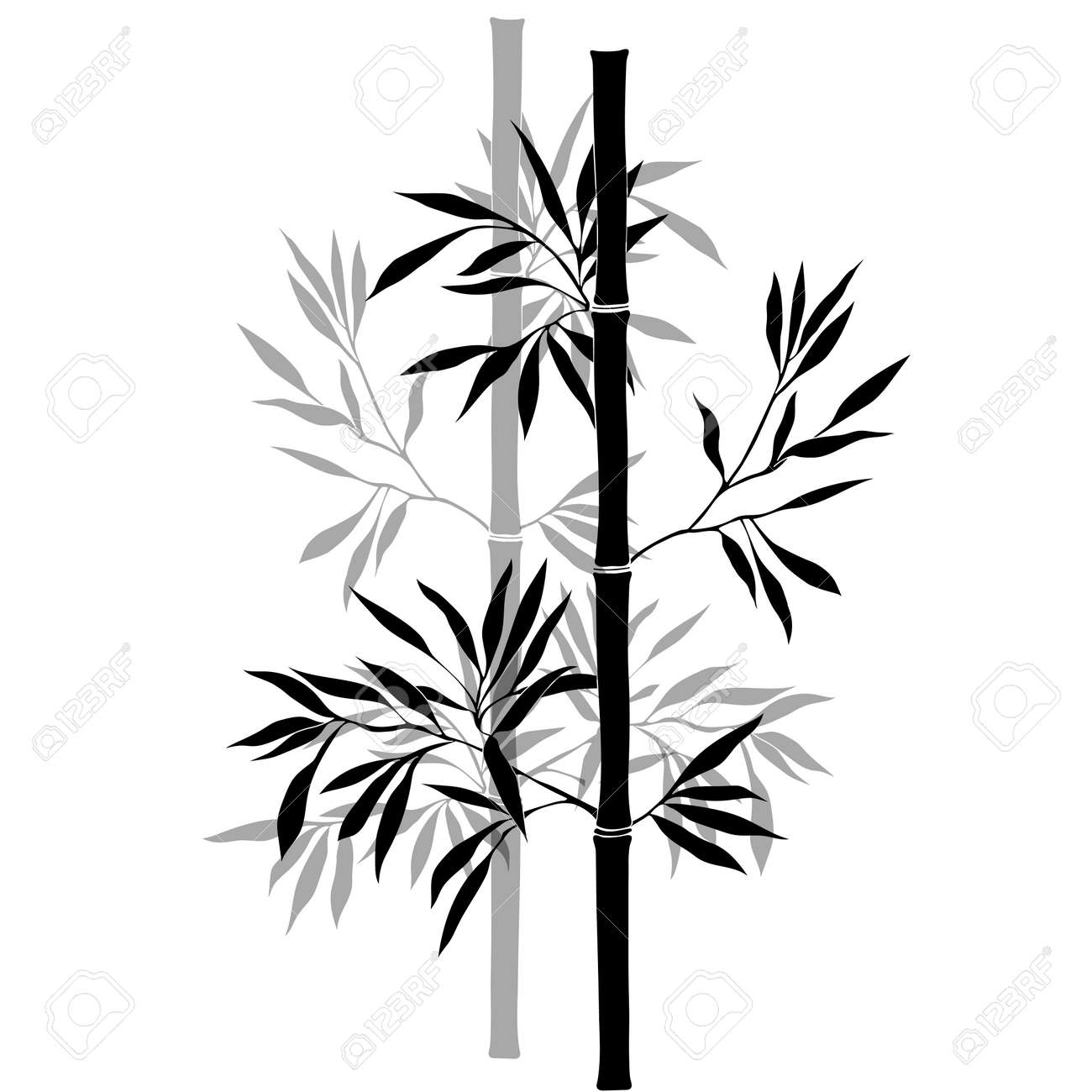 Bamboo branches isolated on the white background. black silhouette. - 41305496