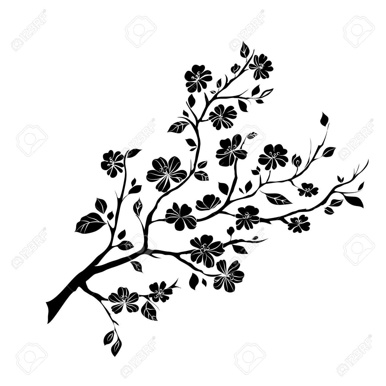twig sakura blossoms. Vector illustration. Black Silhouette - 41794584