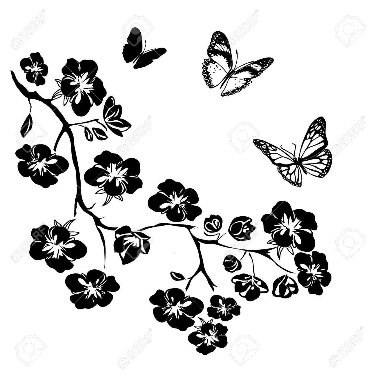 twig sakura blossoms and butterflies. Vector illustration. Black Silhouette on white background - 43574443