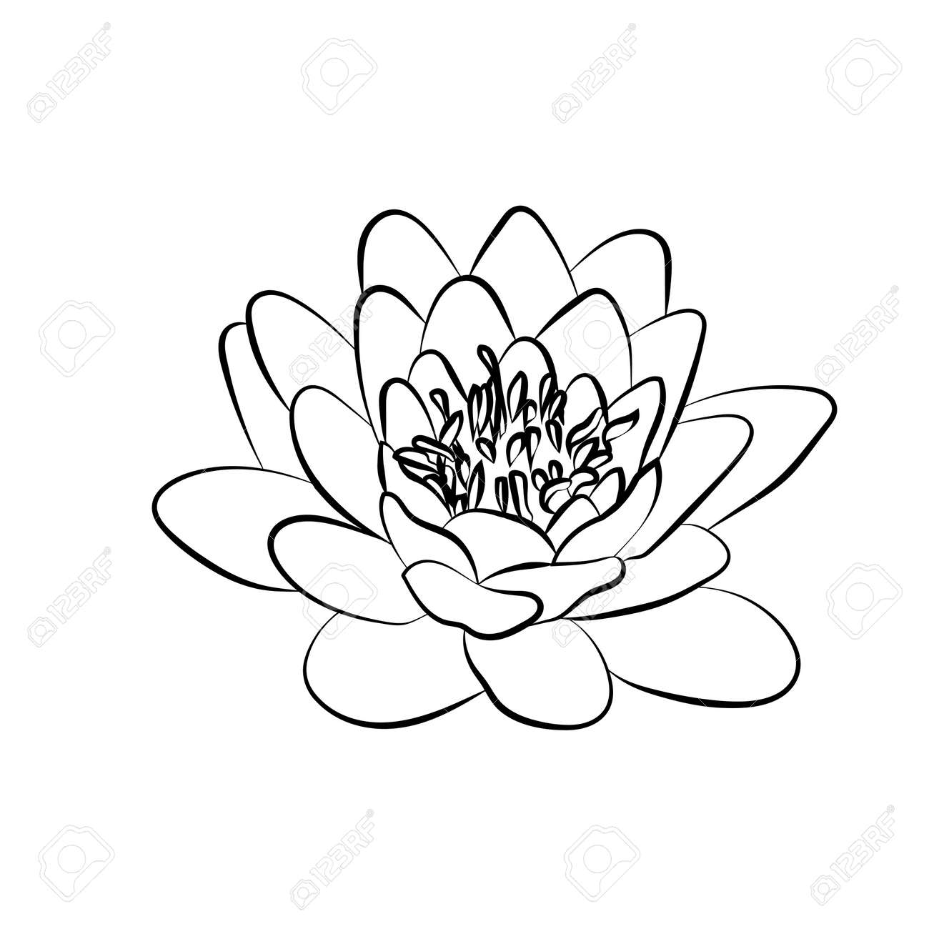 Lotus Flowers Icon The Black Line Drawn On A White Background