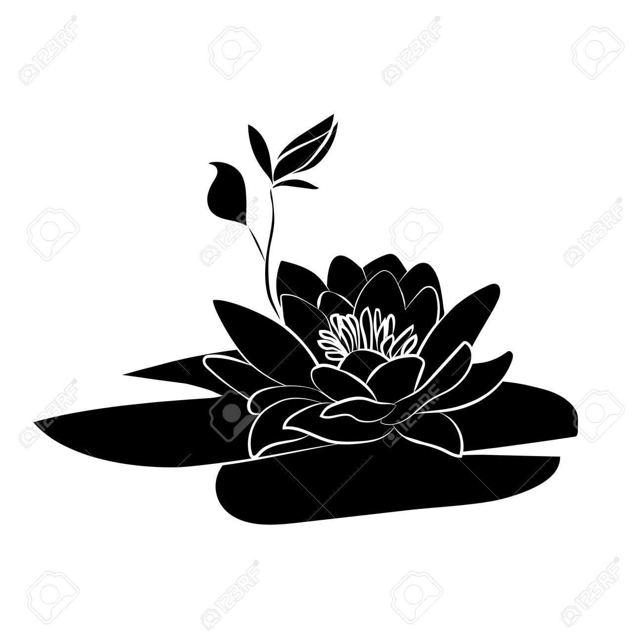 Lotus Silhouette Lotus Symbol Vector Freepatternsarea Buddha