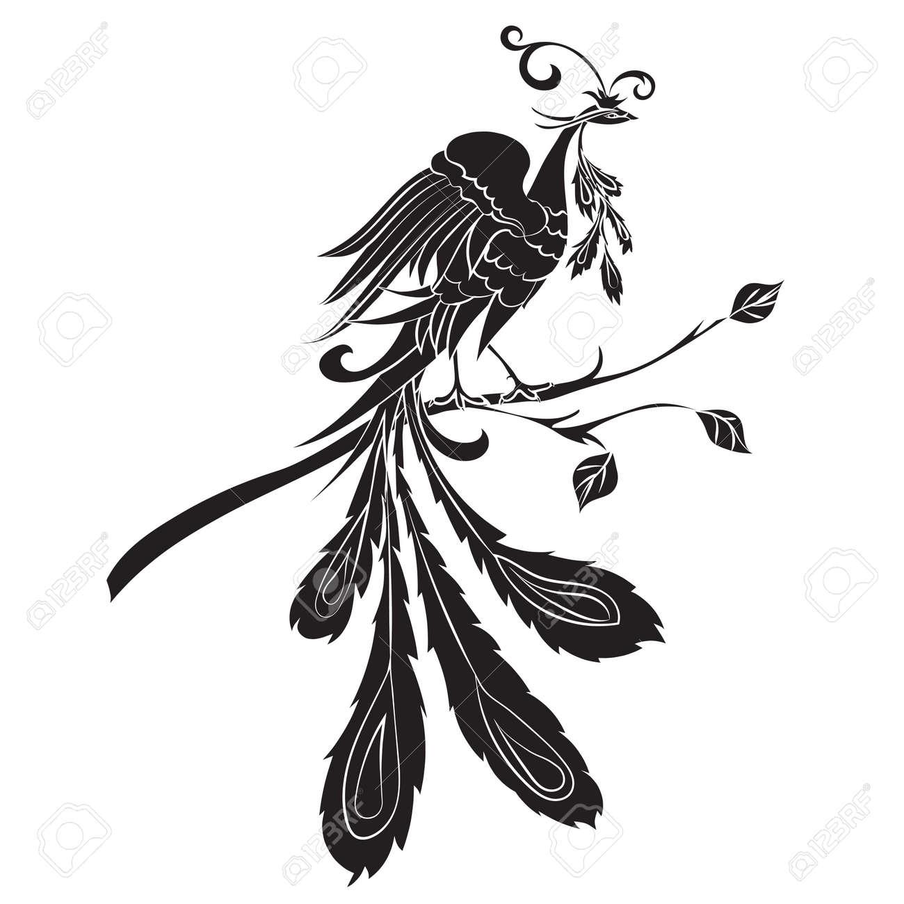 Silhouette Noire Feu Oiseaux Sont Sur Un Fond Blanc Vector Illustration Dessin Oiseau Ornement Décoré Dornements Abstraits