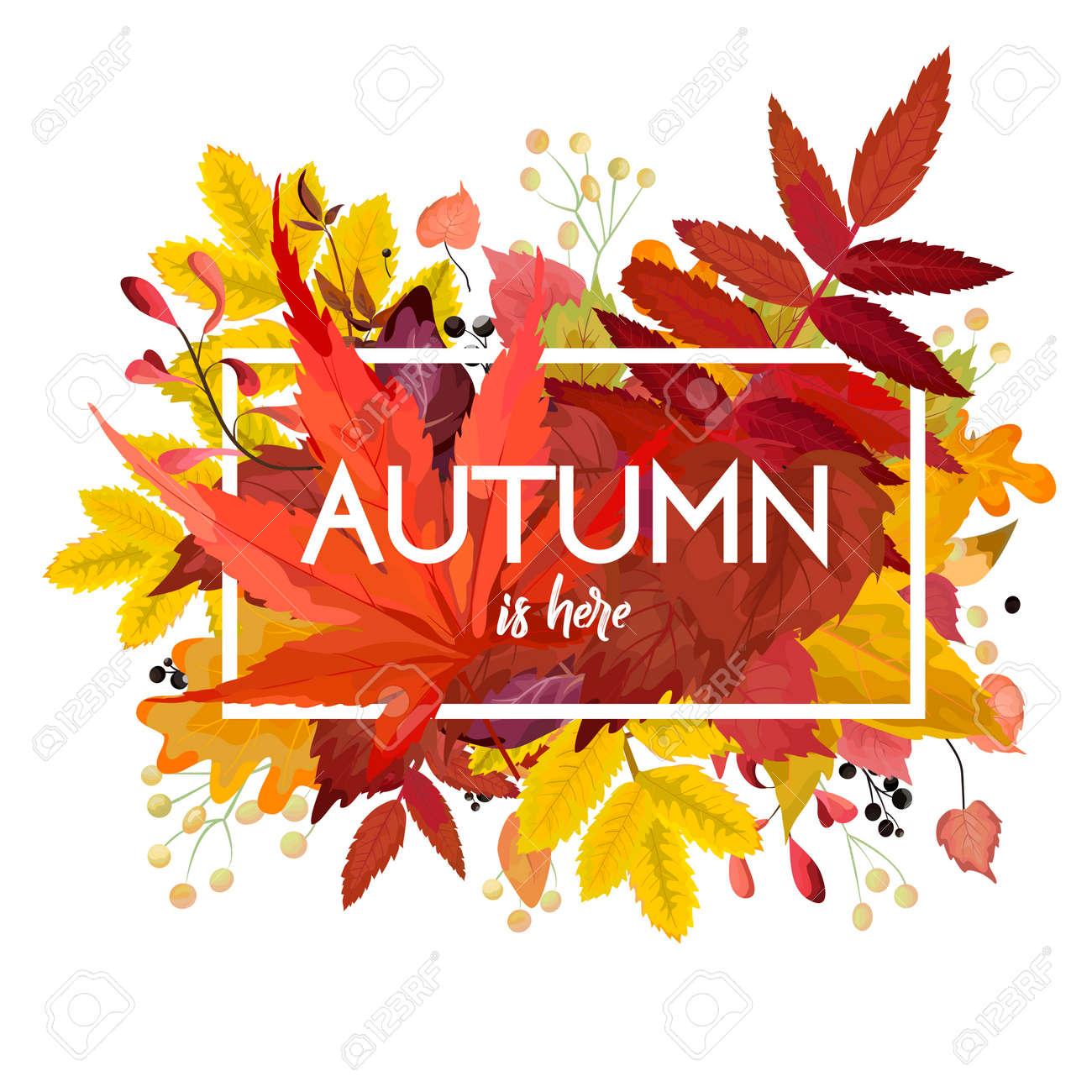 Autumn Season Vector Floral Watercolor Style Card Design Border ...