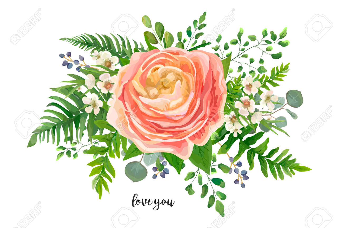 Flower Bouquet Vector Watercolor Element Peach Pink Rose Ranunculus Wax Flowers Eucalyptus