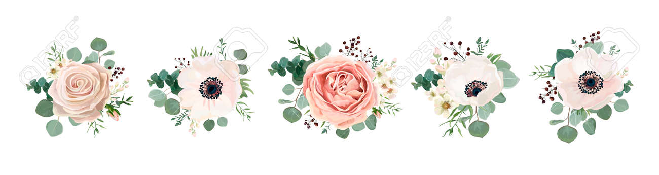 Vector floral bouquet design: garden pink peach lavender creamy powder pale Rose wax flower, anemone Eucalyptus branch greenery leaves berry. Wedding vector invite card Watercolor designer element set - 92801067