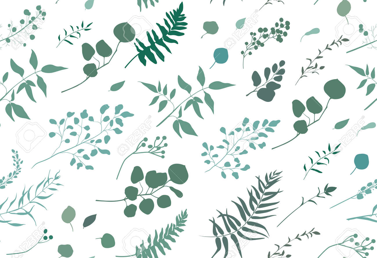 Seamless pattern of Eucalyptus palm fern different tree, foliage natural branches, green leaves, herbs, berries tropical heel hand drawn silhouette watercolor Vector beauty elegant background on white - 92801220