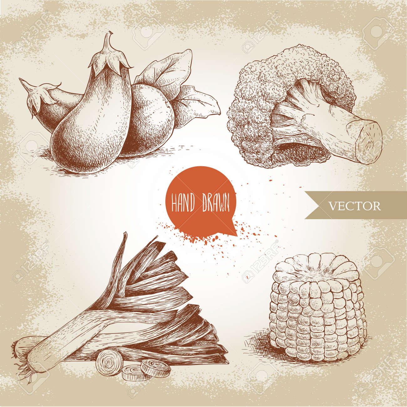 Hand Drawn Sketch Style Vegetables Set. Leeks, Eggplants, Broccoli ...