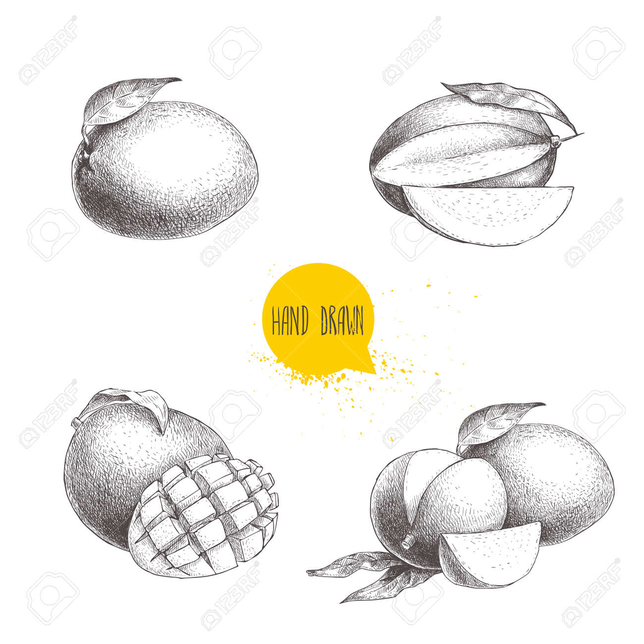 Hand drawn mango fruits set with leafs and mango slices and cubes sketch style vector