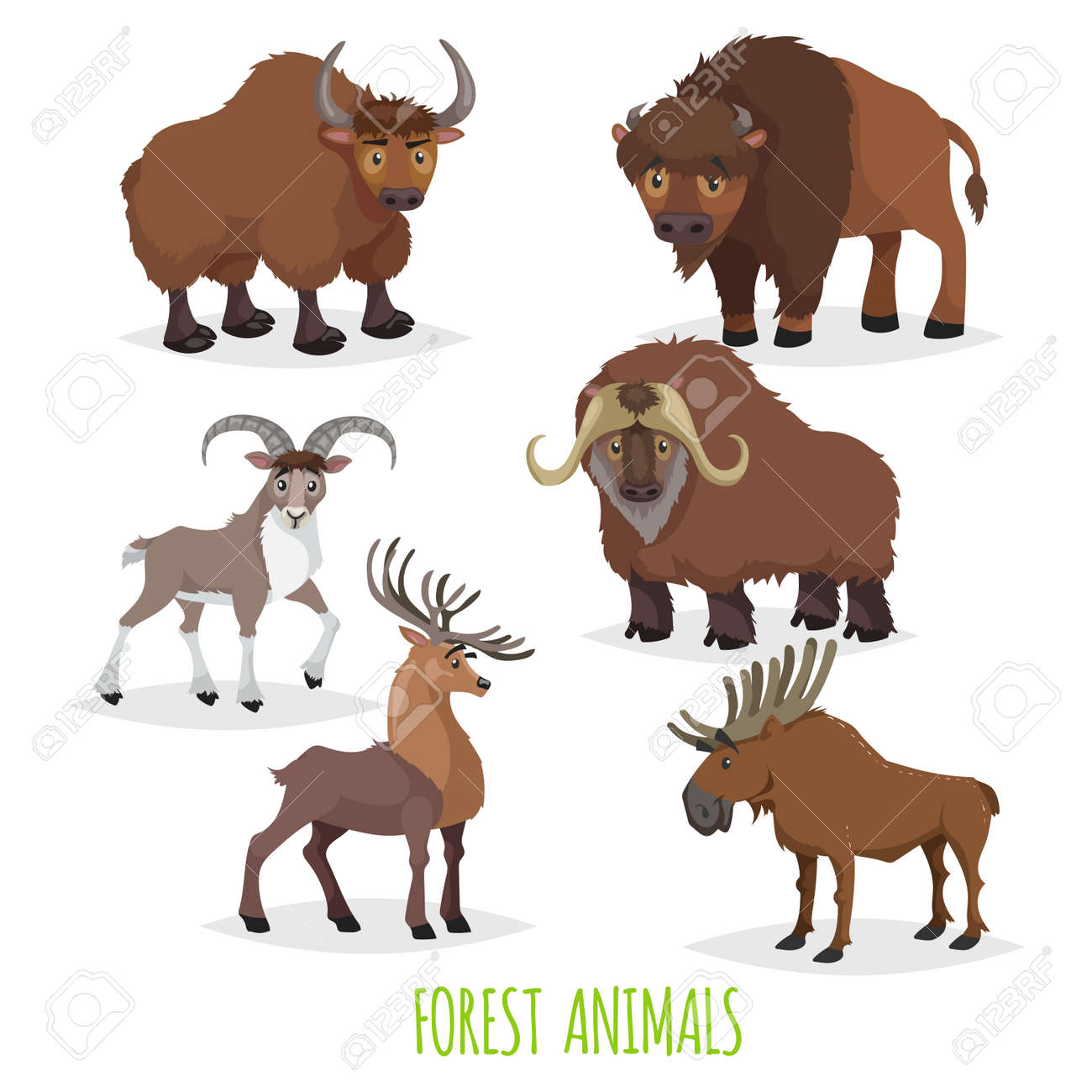 Set of woodland and forest hoofed and horned animals. Europe and North America fauna collection. Yak, bison, urial (mountain male sheep), musk ox, deer and moose. - 156128330