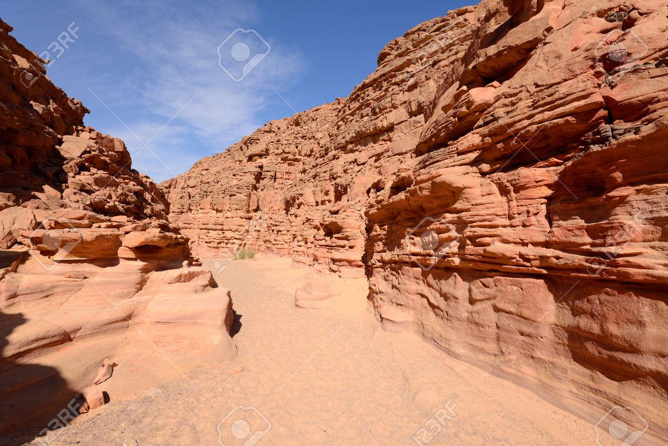 Supera las ardientes dunas del Sinaí al tiempo que la guerra total llega al desierto.