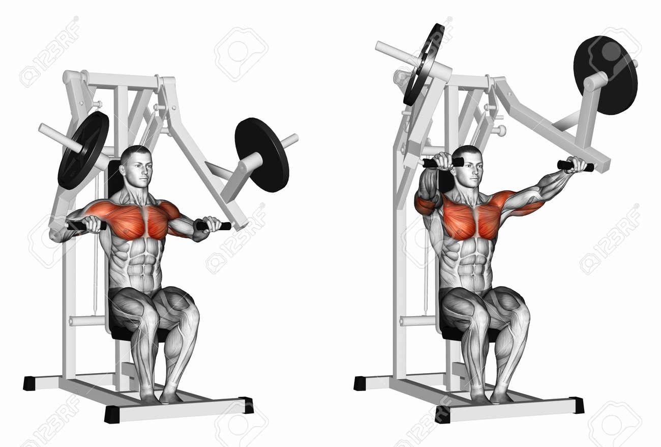 Gymmangesh Hammer strength chest press