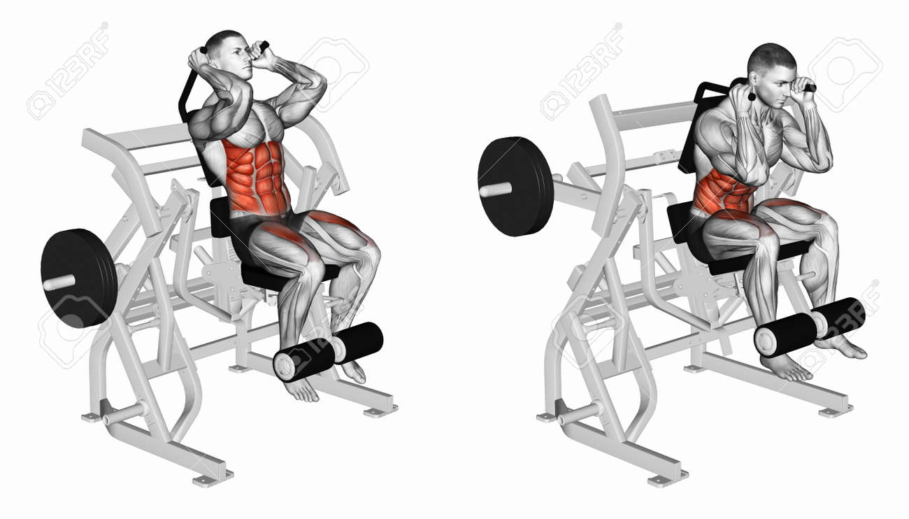 Flexión Del Cuerpo De Los Músculos Abdominales Y Piernas. El ...