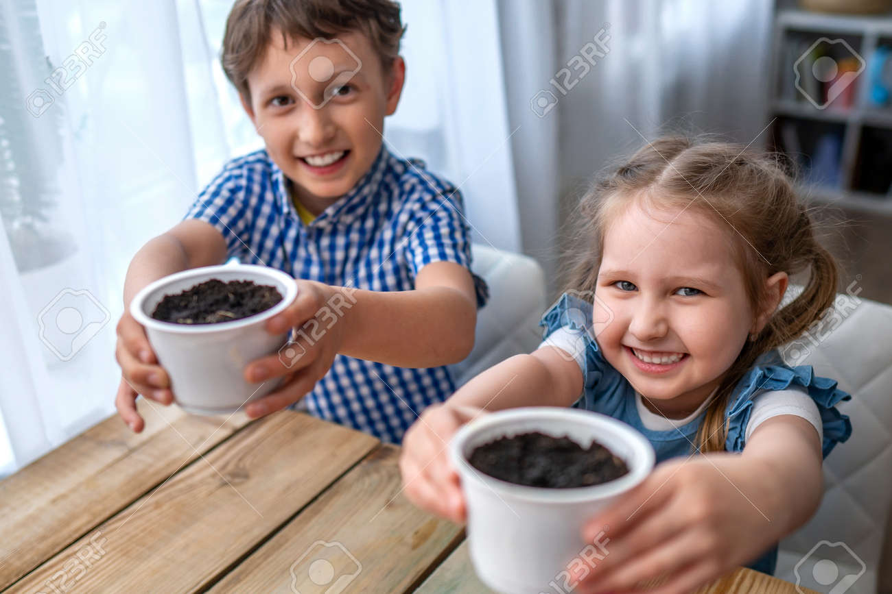 Cute boy and girl sitting at table and engaged in sowing seeds for cultivation. Children sow seeds in ground and cheerfully hold out pots. concept of growing your own vegetables. Natural gardening. - 146984517
