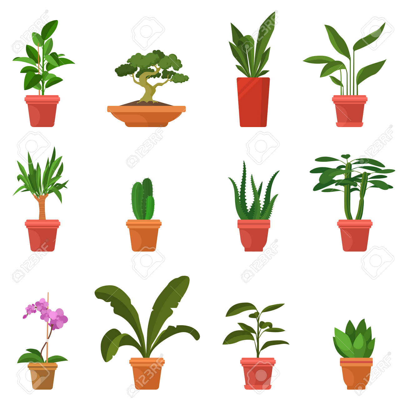 House Plants Vector Illustration Set Of Colorful Indoor Plants Royalty Free Cliparts Vectors And Stock Illustration Image 102582172