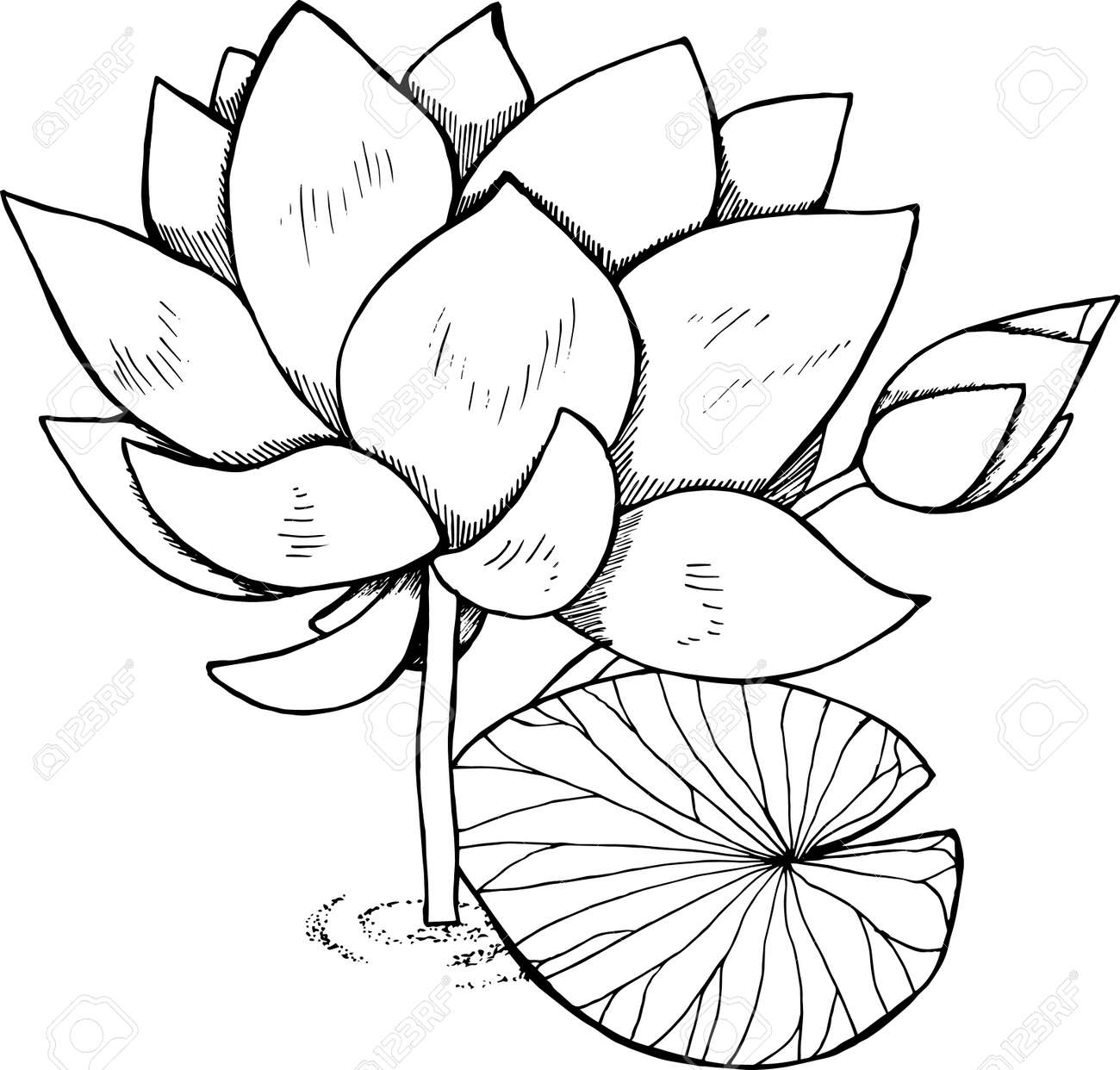 Black And White Lotus Illustration Pattern Om And Flower