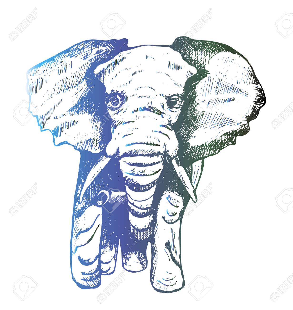Ilustración De Una Eclosión De La Computadora Del Elefante. Tatuajes ...