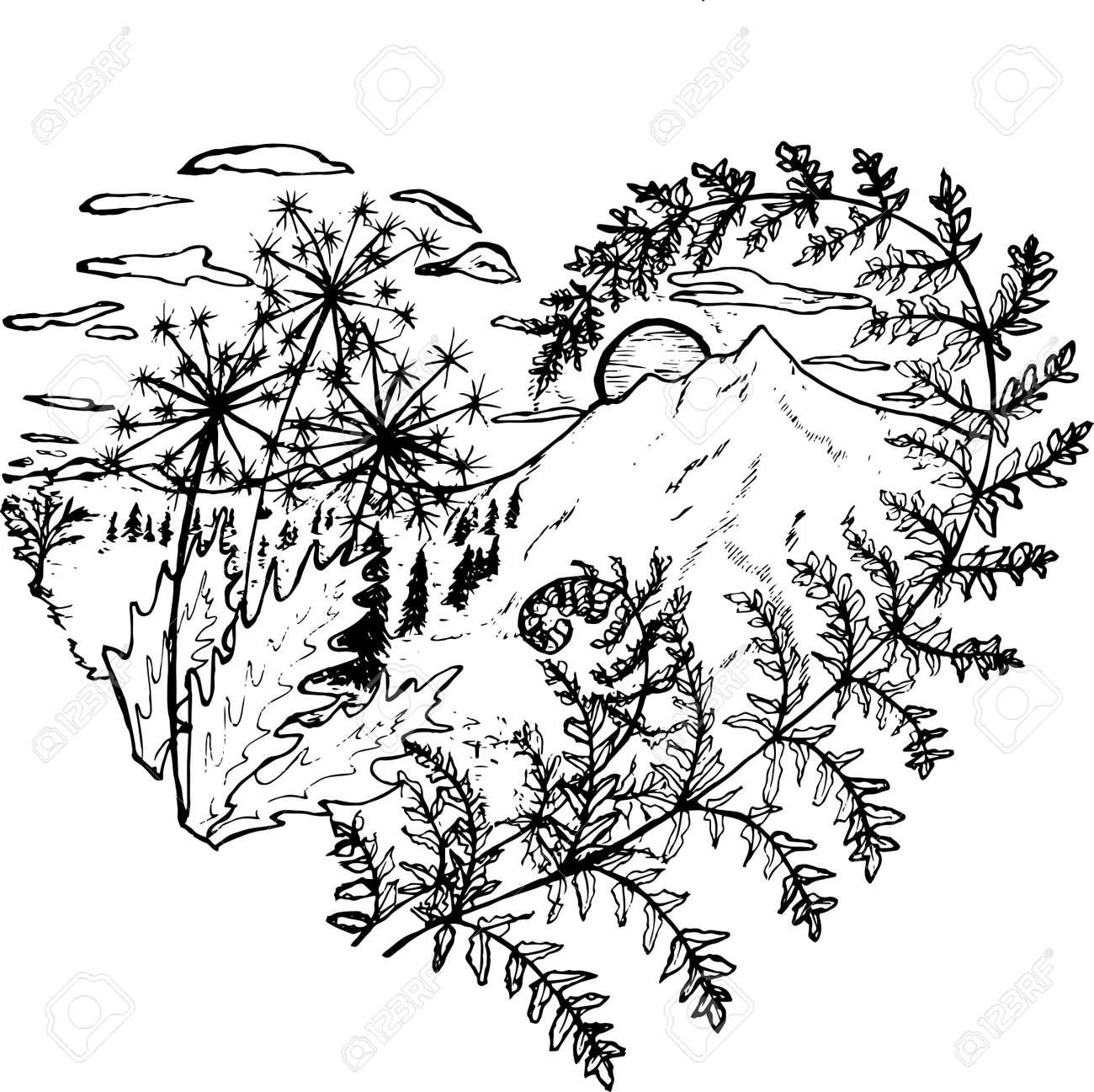 Dessin Noir Et Blanc Du Coeur Dans Lequel Pissenlits Fougères