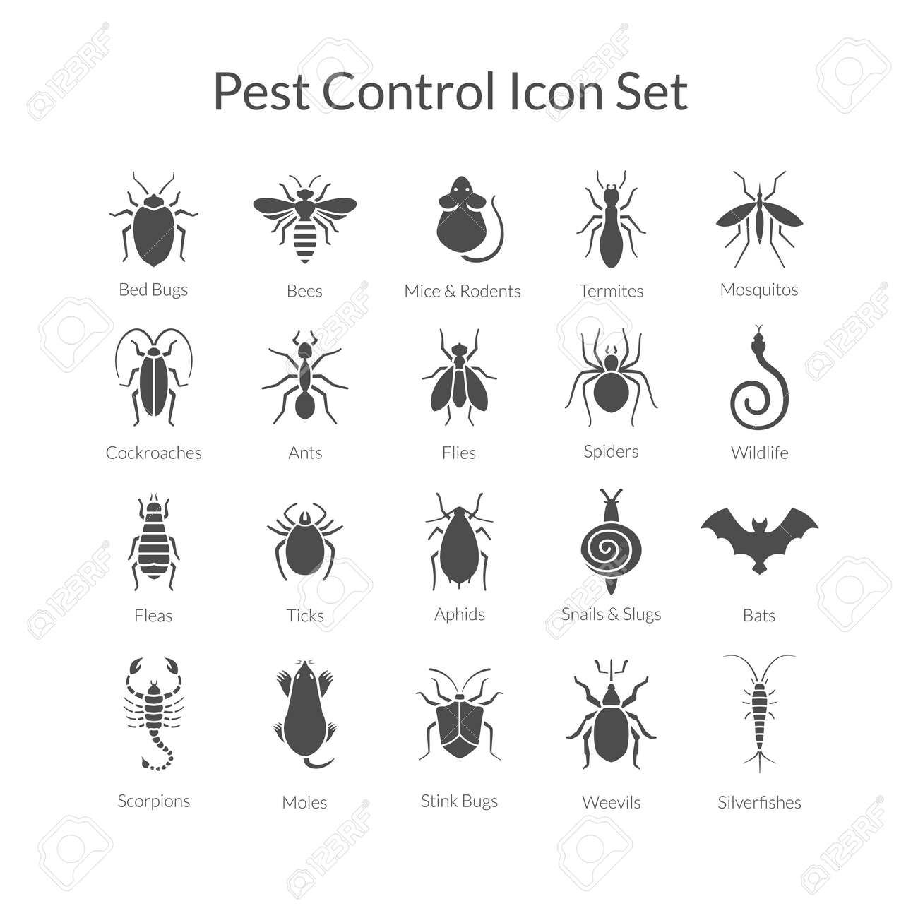 Vector black and white icons of different insects like scorpions, stink bugs, bed bugs, weevils and termites for pest control companies. Included some animals like bats, moles, mice and snakes. - 50024597