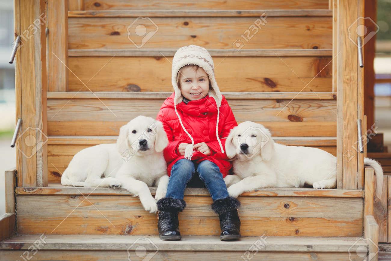 A Little Girl With Two Puppy Golden Retriever Autumn Portrait