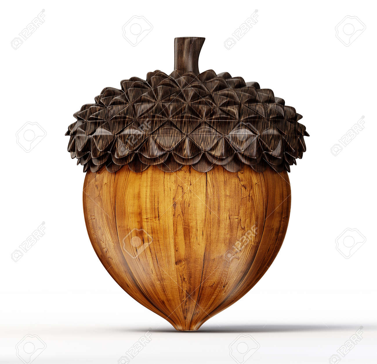 brown acorn isolated on a white background - 25741624