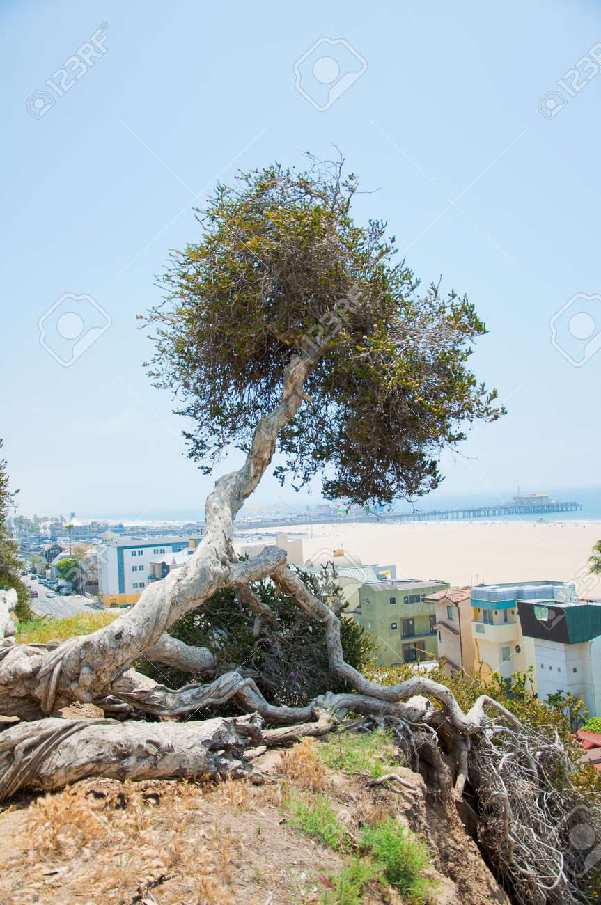 Typical Seascape Stock Photo - 14299450