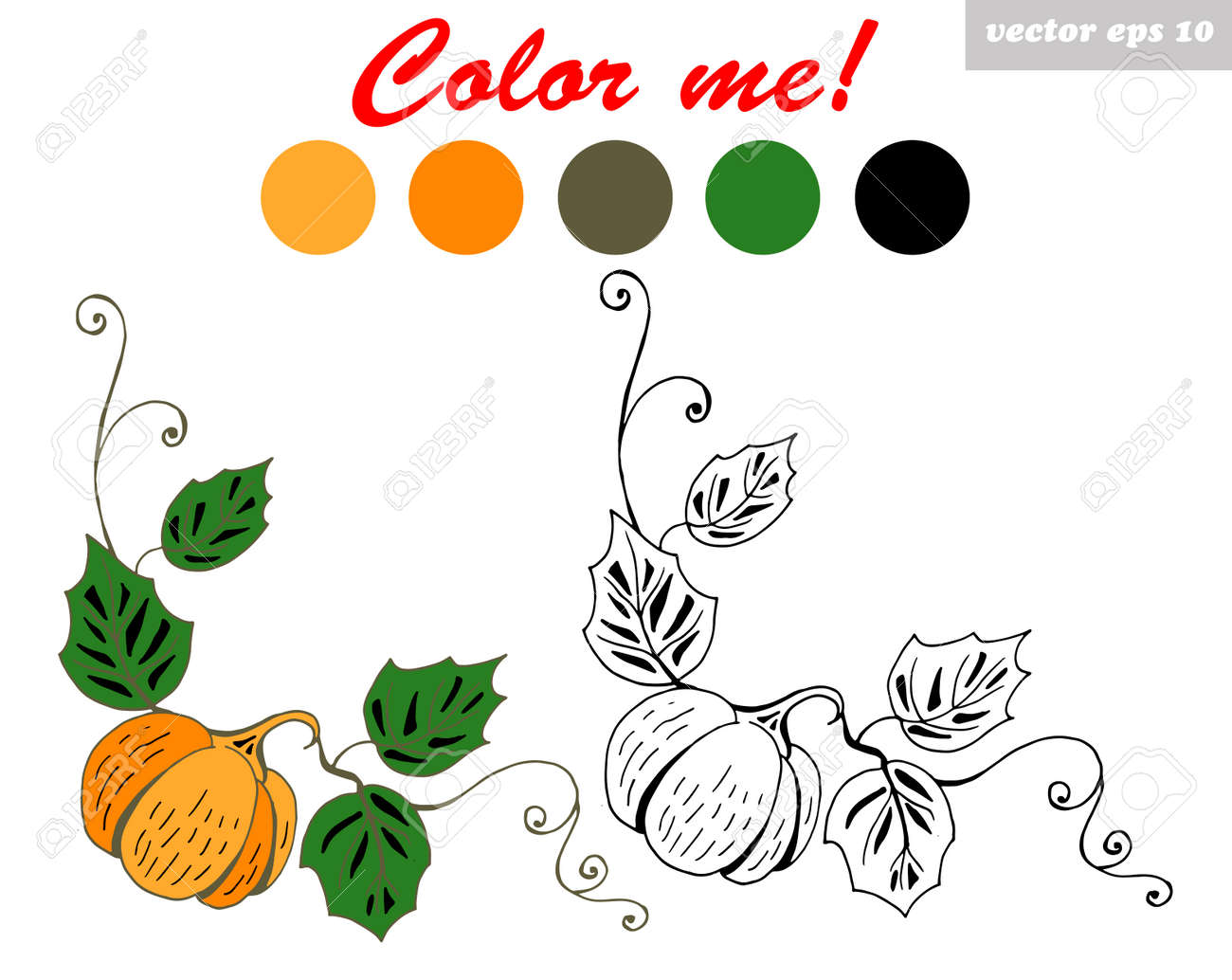 Pumpkin Coloring Book Page. Good For Kids Educational Program ...