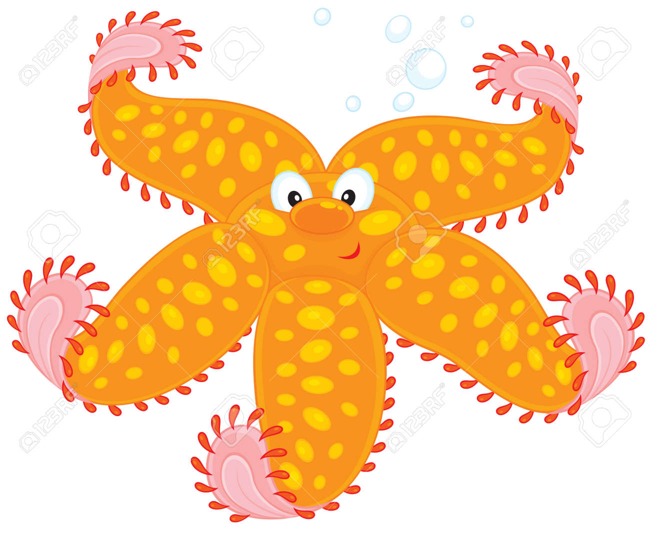 21,828 Starfish Stock Vector Illustration And Royalty Free ...