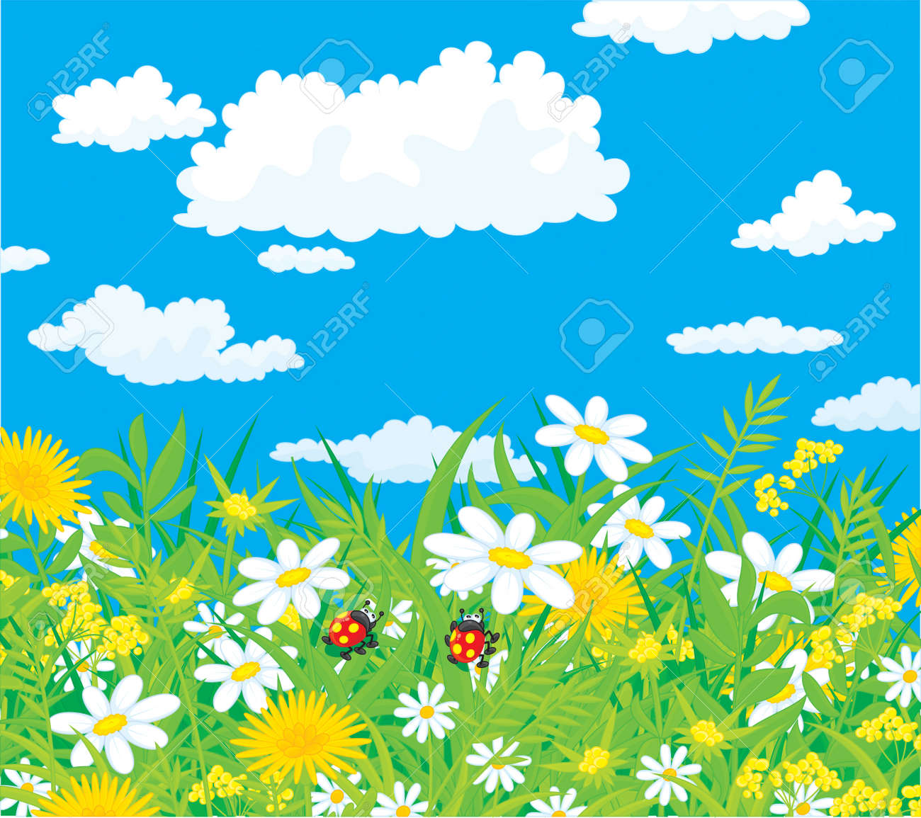 Ladybugs in a field with chamomiles Stock Vector - 13070374