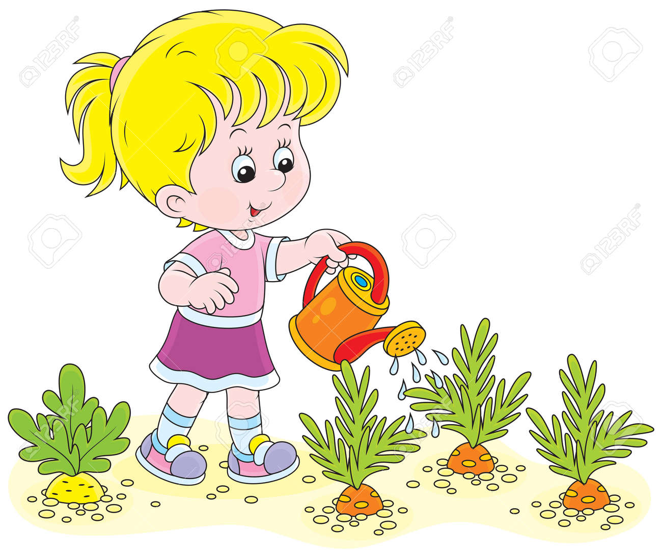 Little Girl Watering Vegetables In A Kitchen Garden Royalty Free ...