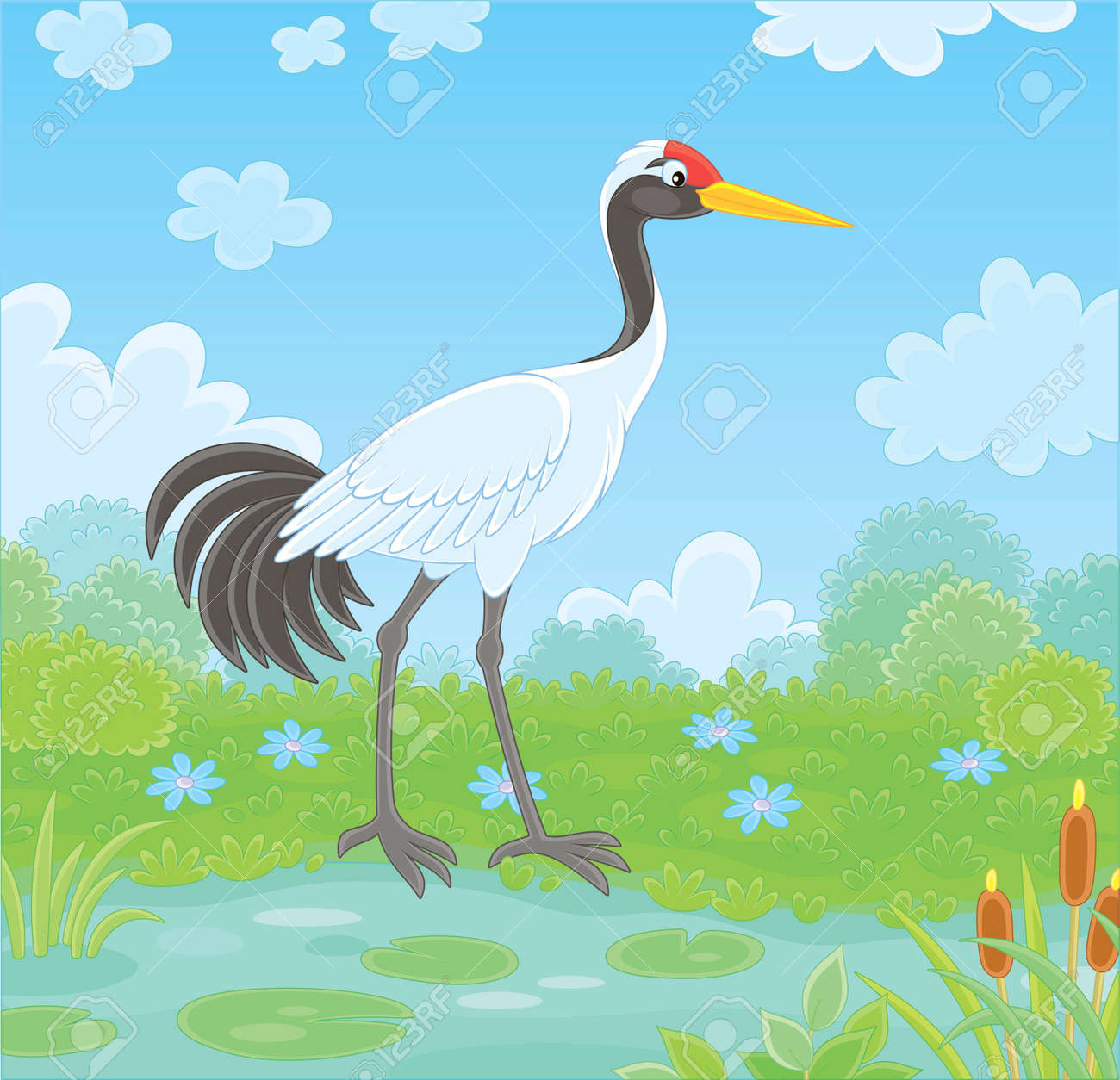Red Crowned Crane Bird By A Small Lake Among Cane Grass And Royalty Free Cliparts Vectors And Stock Illustration Image 125469353 Bald eagle logo, cartoon eagle, animals, carnivoran, vertebrate png. red crowned crane bird by a small lake among cane grass and