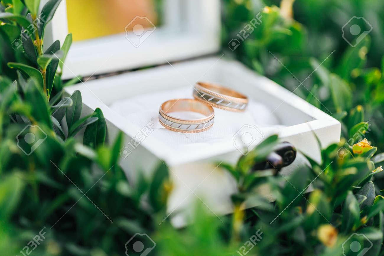 White decoupage box for wedding rings on green leaves