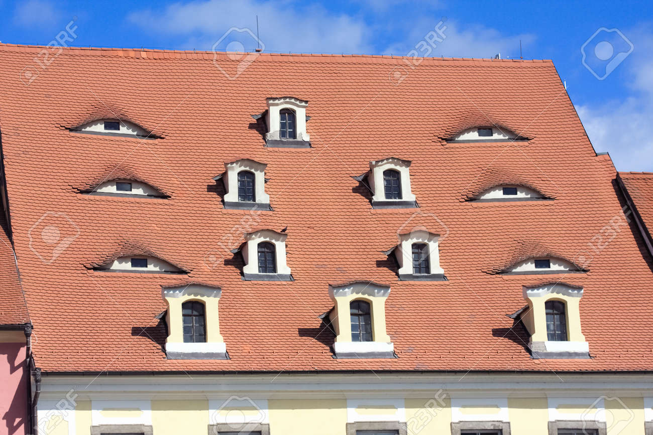 Old tile roof at Cheb  Czech Republic  with windows look as eyes Stock Photo - 12682306