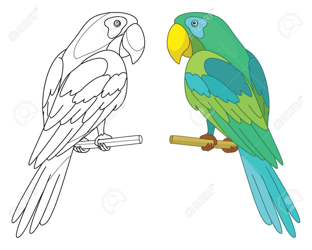 Bird parrot sits on a wooden perch, colored and black contour on white background - 12802604
