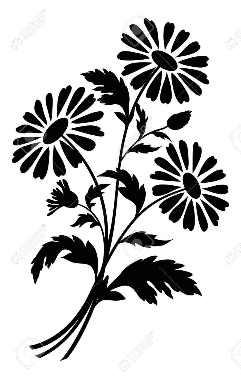 Bouquet of chamomile flowers, black silhouettes on white background