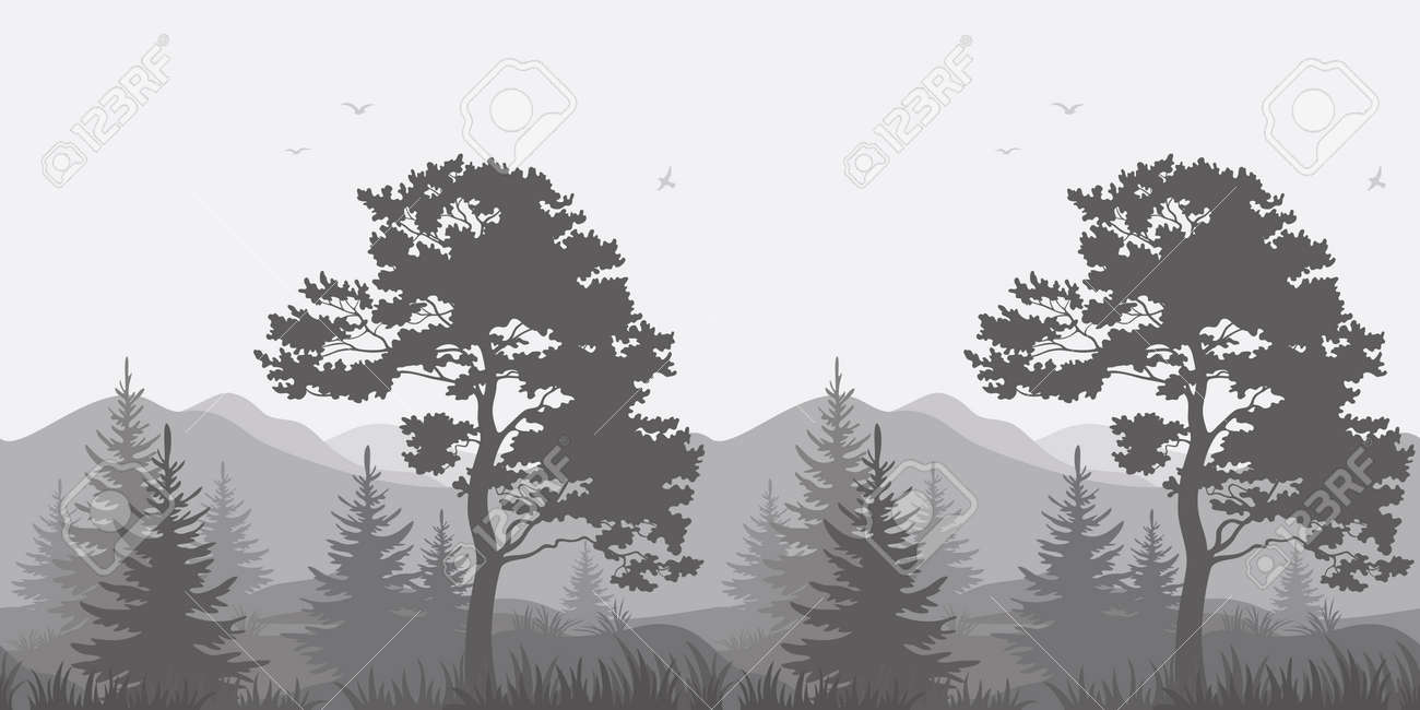 Seamless, mountain landscape with pines, conifer trees, birds and grass, gray silhouettes. Vector - 36756293