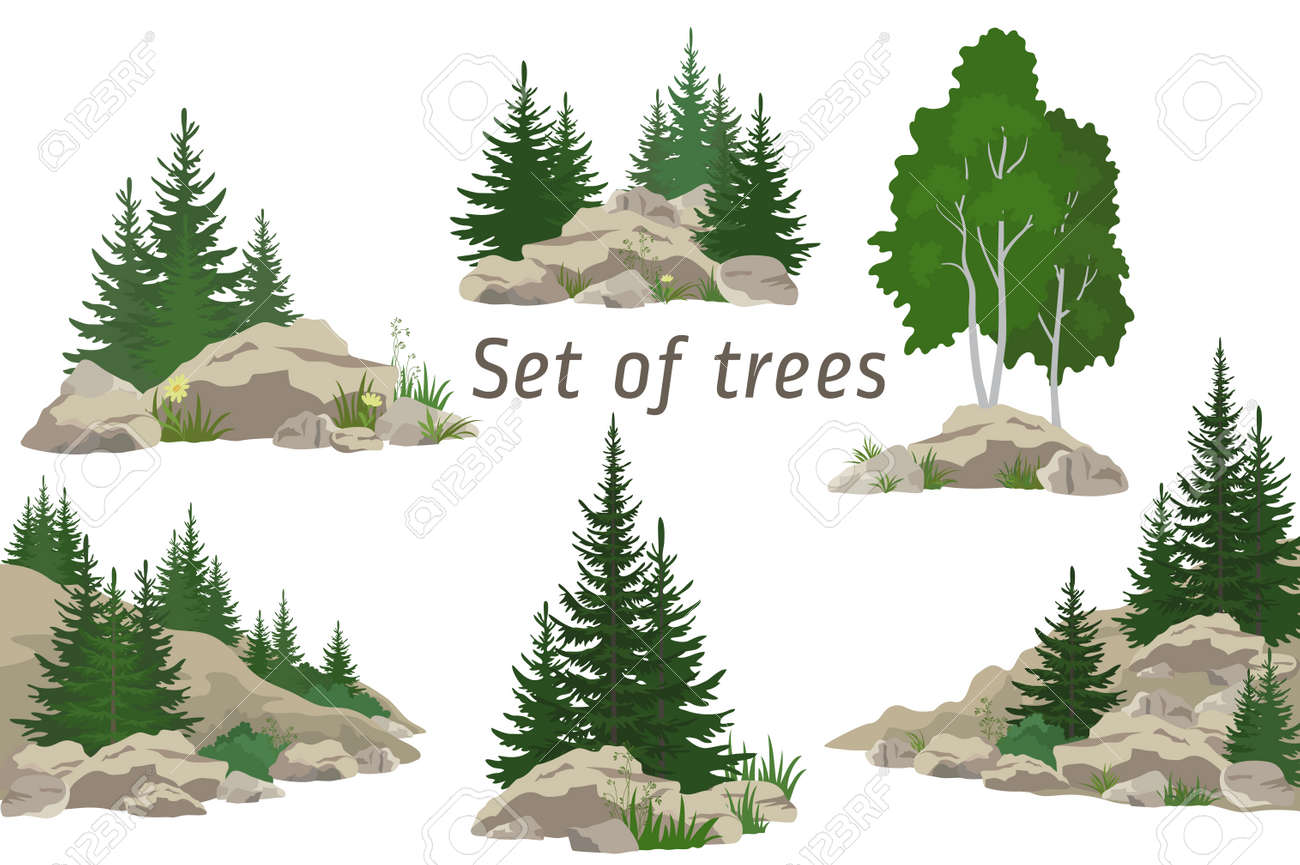 Set Landscapes, Isolated on White Background Coniferous and Deciduous Trees, Flowers and Grass on the Rocks. ector - 52961192