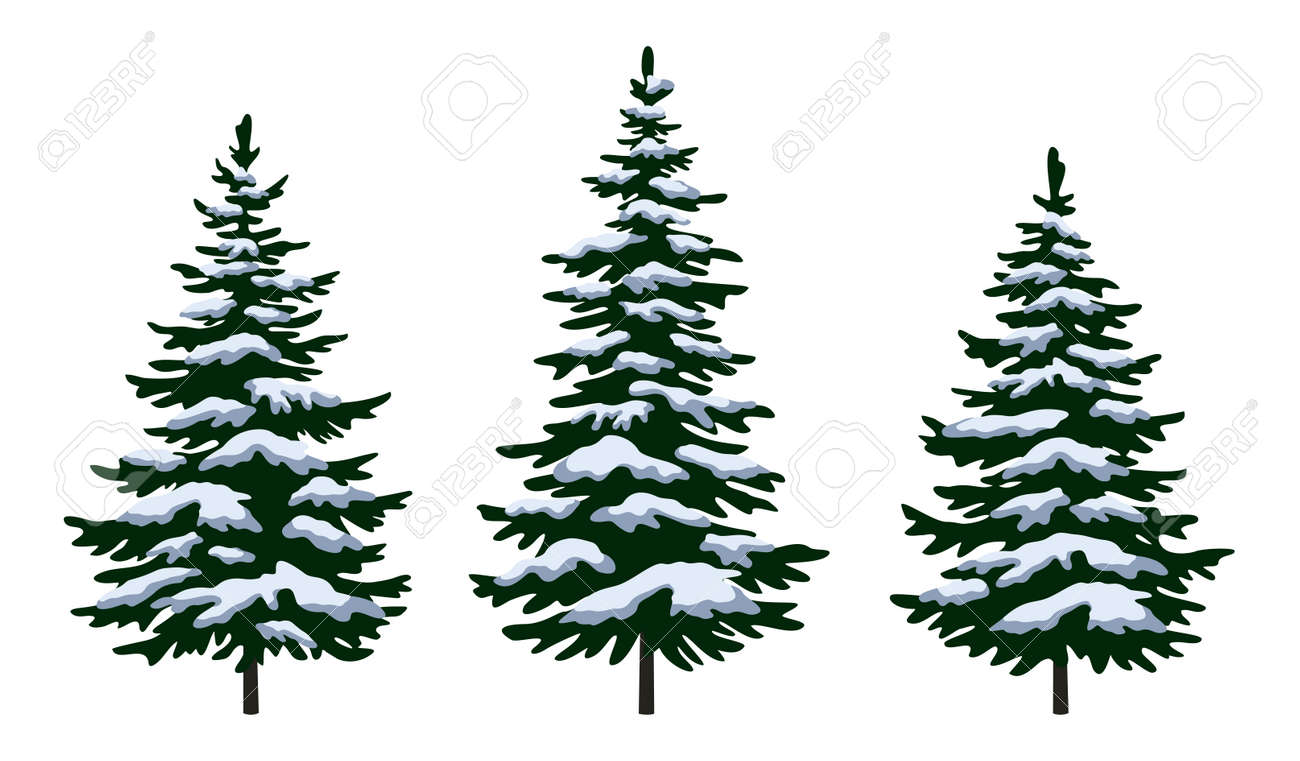 Set Green Fir Trees with White and Blue Snow, Winter Holiday Christmas Decoration Isolated on White Background. Vector - 89144187