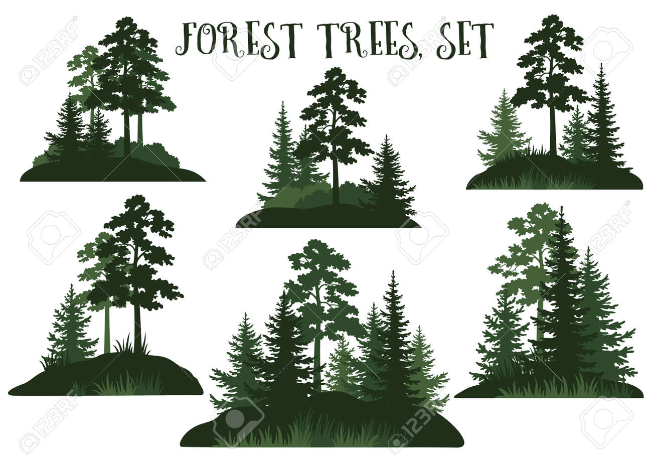 Set Landscapes, Isolated on White Background Green Silhouettes Coniferous and Deciduous Trees and Grass. Vector. - 92675263