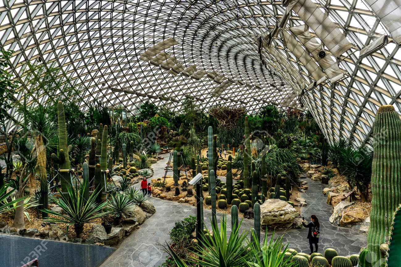 Fantastic China Shanghai Botanical Garden Greenhouse Dry Desert Climate Home Interior And Landscaping Oversignezvosmurscom